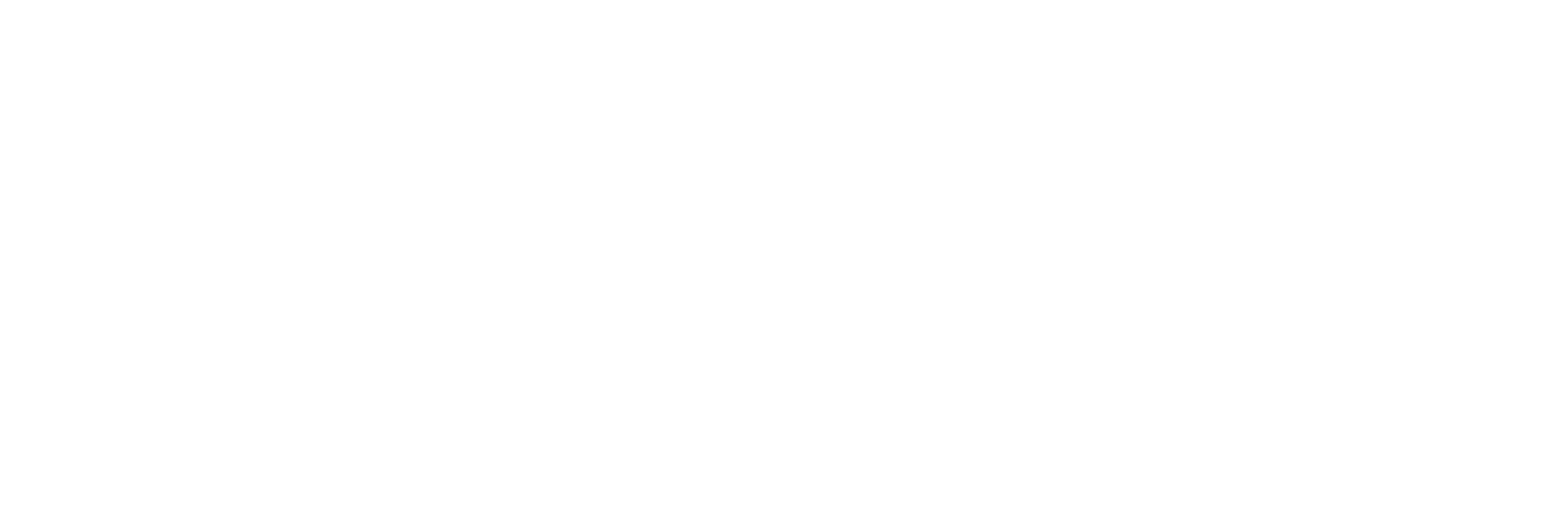 TBN logo - White